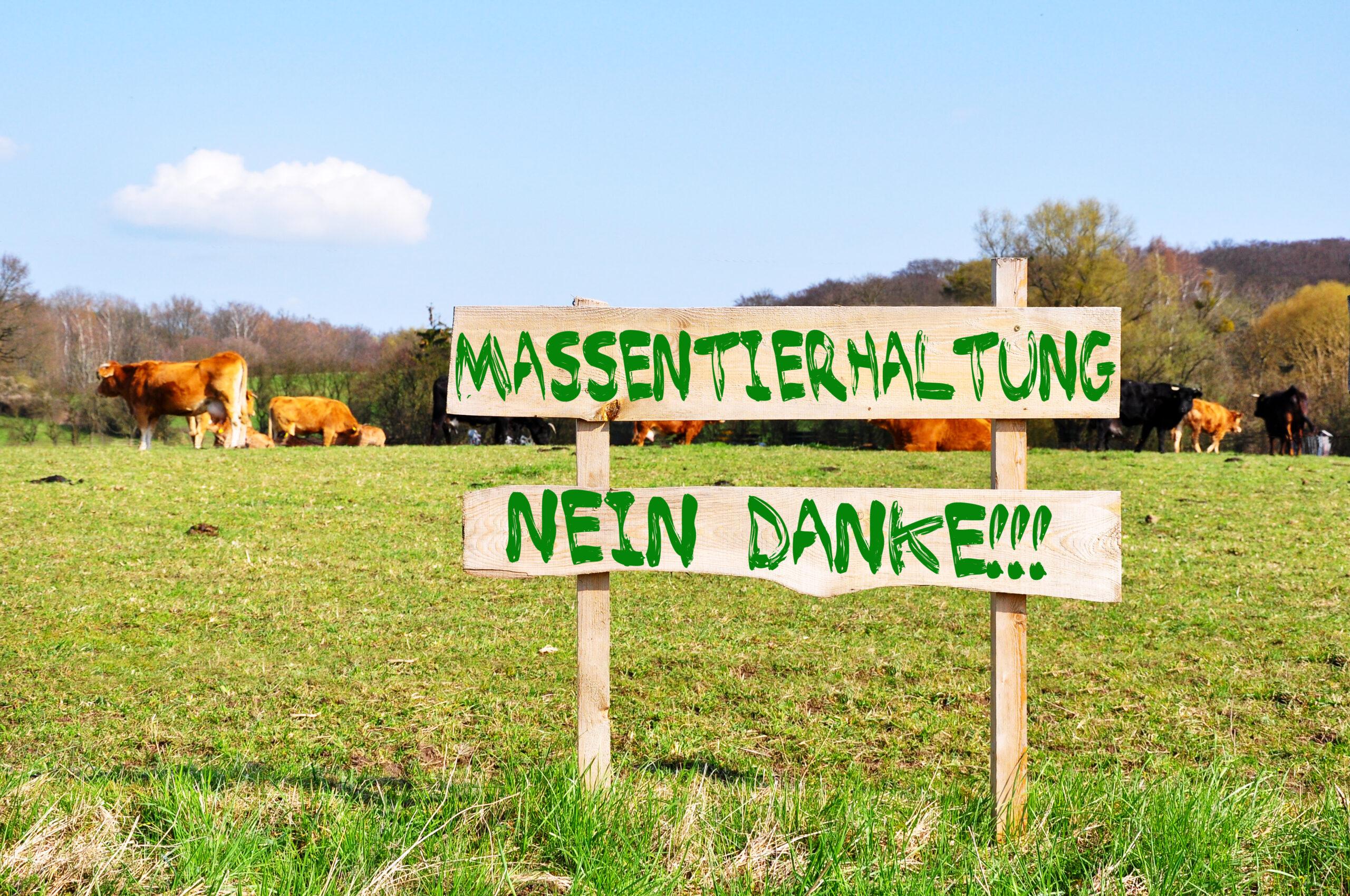 """Die Einrichtung der unabhängigen """"Dokumentationsstelle Massentierhaltung"""" soll im ersten Quartal 2022 ihre Arbeit aufnehmen."""